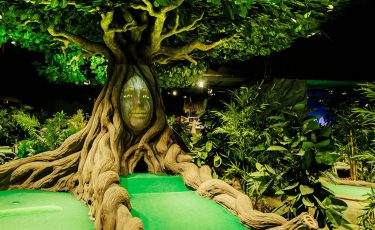 Treetop Adventure Golf - Leicester